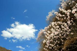 春季 野三坡