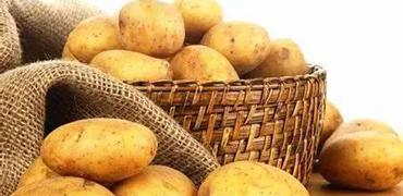 土豆皮变绿后就不能食用?专家释疑