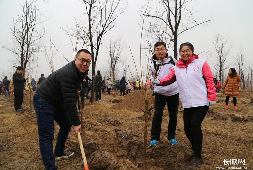 中国电科十三所、五十四所携手开展义务植树活动