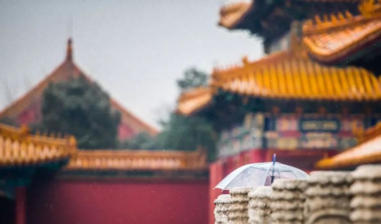 北京下雪啦!大家在故宫玩high了……