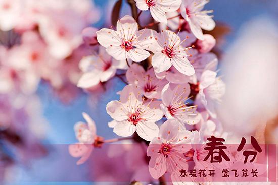 万物复苏春来早,春分时节话养生