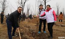 义务植树活动