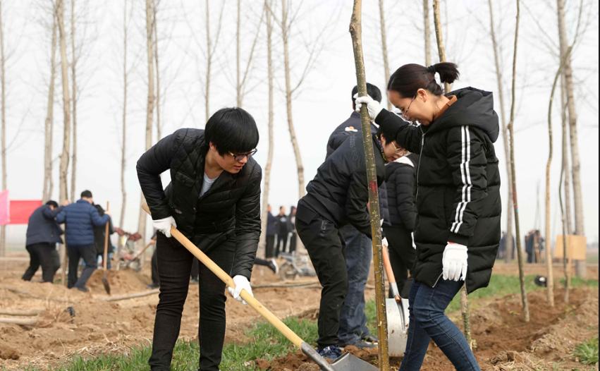 掀起春季造林绿化高潮