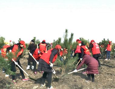 16万株 3000亩 唐山万余人参与春季义务植树活动