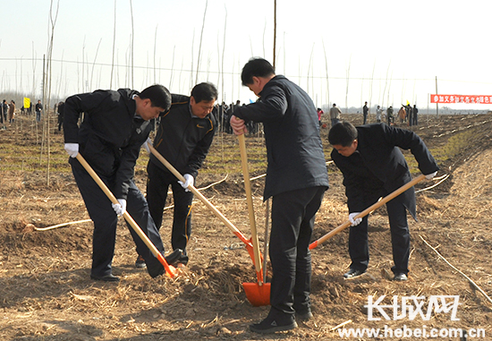 唐山滦南开展义务植树活动 掀全域绿化攻坚高潮
