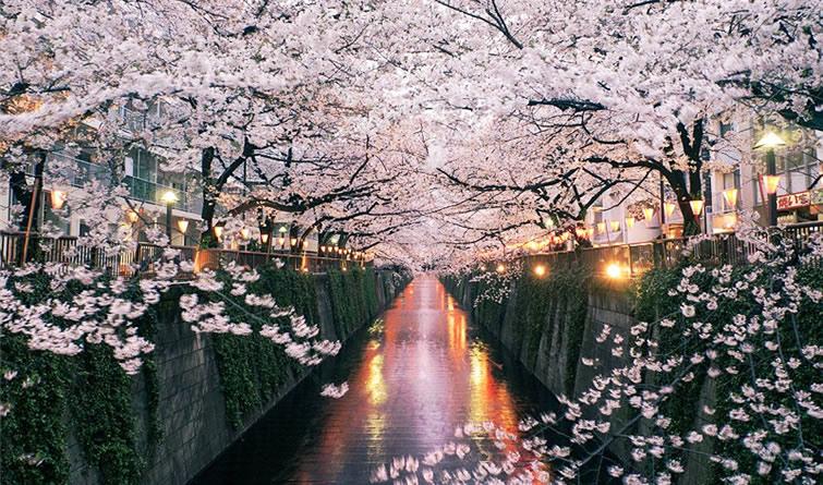 开春了去旅行吧 评选全球最佳春天旅行目的地