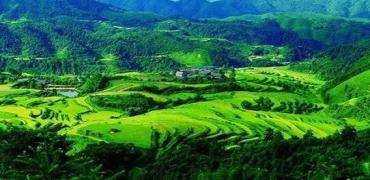 打造乡村农业休闲观光旅游-湖南麻阳油菜花节