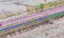 石家庄最美高速路