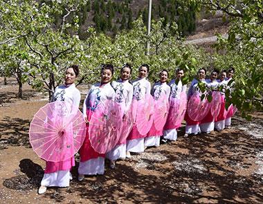 唐山丰润区举办第二届桃花旅游文化节