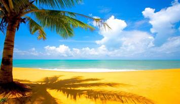 5月起59国人员入境海南旅游免签