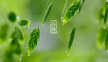 二十四节气之美|谷雨:暮春将至 雨生百谷