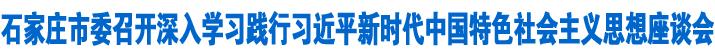 市委召开深入学习践行习近平新时代中国特色社会主义思想座谈会