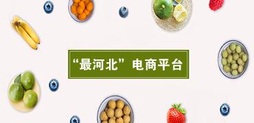 """河北特色电子名片""""最河北""""电商平台"""