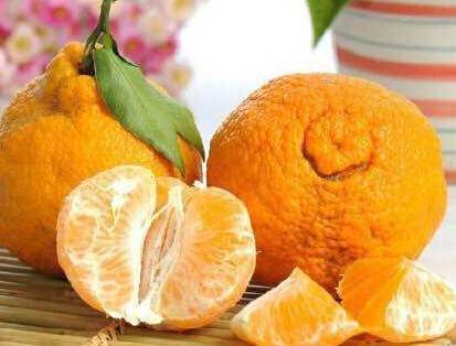 """敢叫丑橘?首先 你得够""""丑"""""""