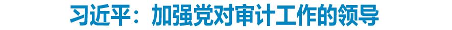 习近平:加强党对审计工作的领导