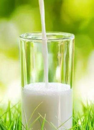 """奶业消费从""""喝奶""""向""""吃奶""""转化"""