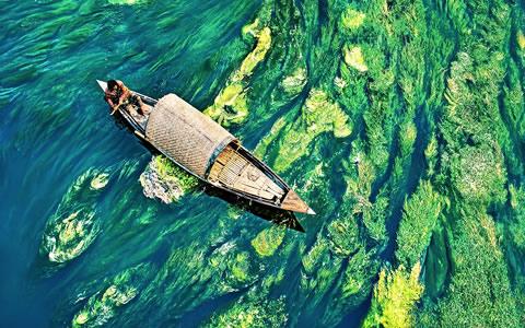 孟加拉小镇河流恍若仙境 水草抢镜似油画浓墨重彩