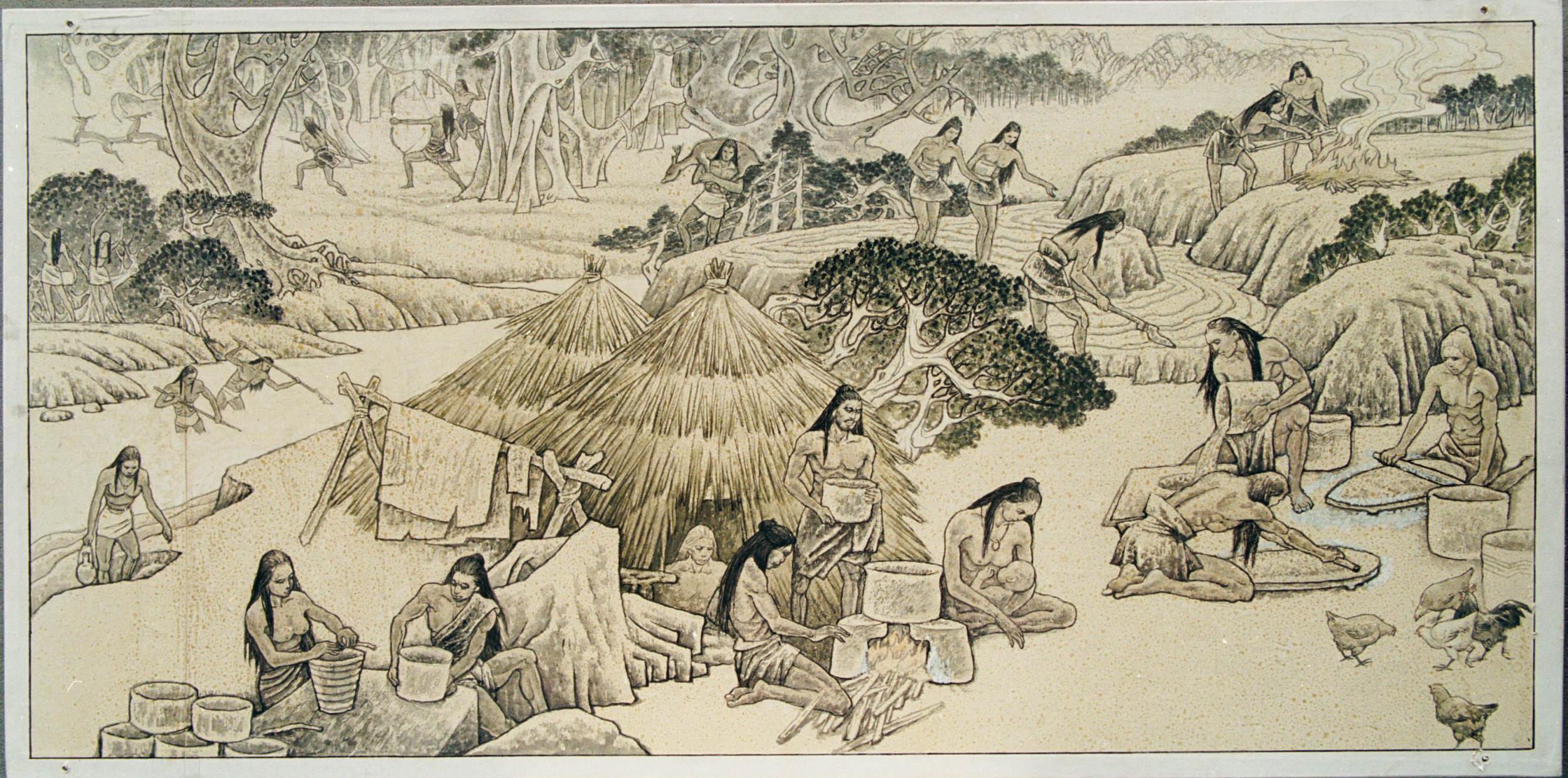 八千年农耕文明磁山文化的故事