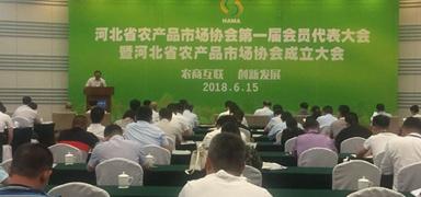 河北省农产品市场协会成立