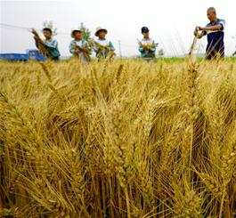 滦县:学农事 度假期