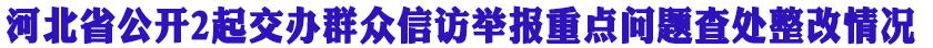 河北省公开2起交办群众信访举报重点问题查处整改情况
