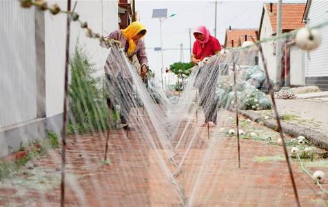 河北黄骅:休渔织网备耕海