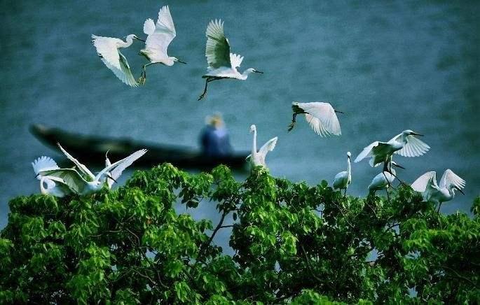 《河北省生态保护红线》解读