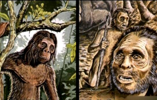 奇闻大揭秘:苏门答腊小矮人