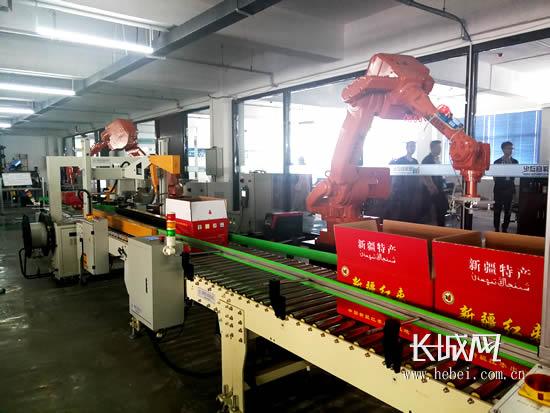 沧州铭洋自动化技术有限公司研发的无人化智能包装流水线。长城网 郭洪杰 摄