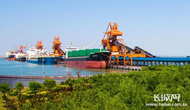 """""""不环保不生产""""沧州黄骅大港建设情系绿色发展"""