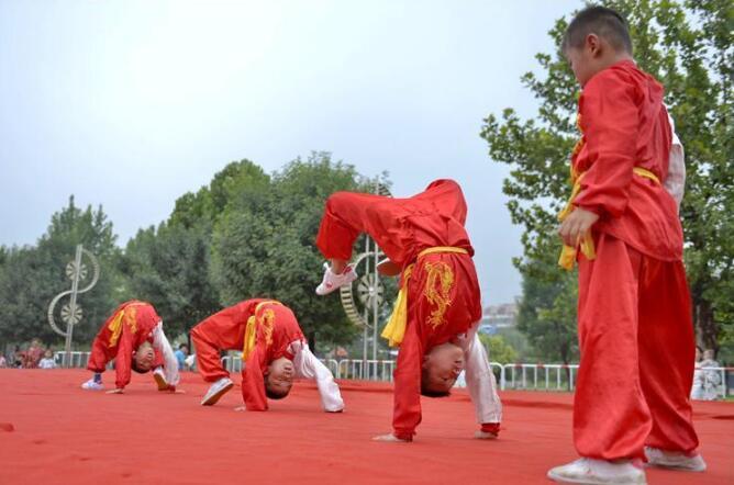 中华潭腿传统武术精英赛在临西县举行