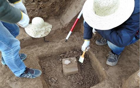 陕西蓝田发现约212万年前古人类活动遗址