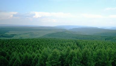 生态文明建设生动范例塞罕坝
