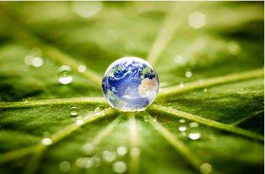 衡水市环保局对外公布6月份十大典型违法案例