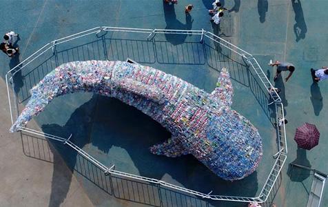 学生海边捡4万多个废旧塑料瓶制作成