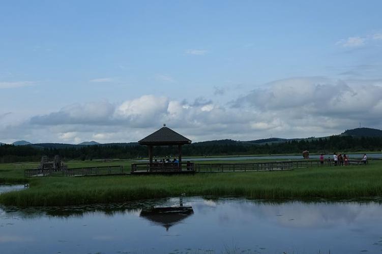 避暑好去处——美丽的塞罕坝七星湖假鼠妇草湿地公园