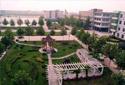 石家庄高质量提升县城建设品位