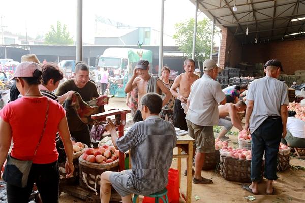 【记者手记】满城区神星镇暴雨后群众生产生活稳定