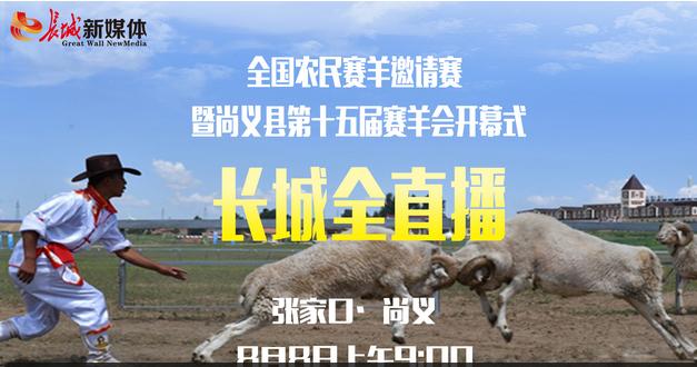 """第十五届""""中国·尚义赛羊会""""公羊对抗赛"""