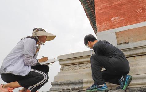 清东陵景区成大学生暑假实践课堂