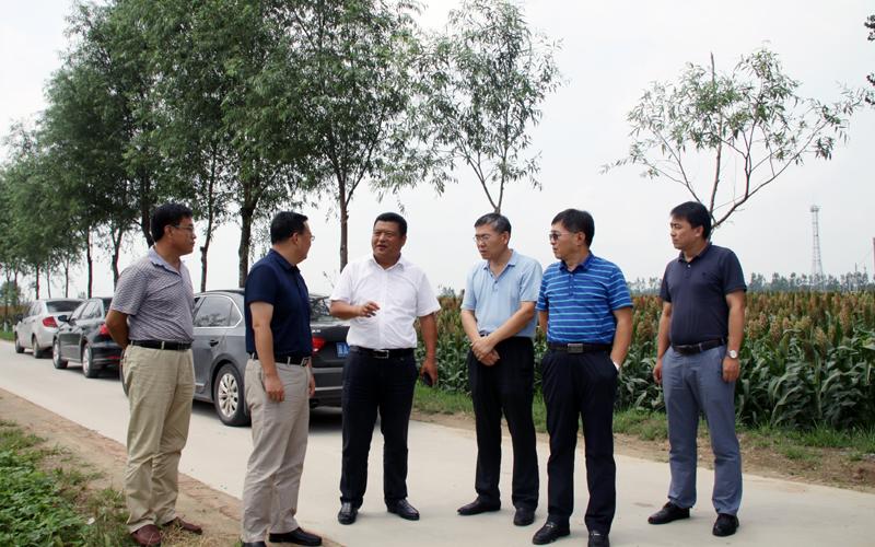 阜城县气象服务直通特色产业的田间地头