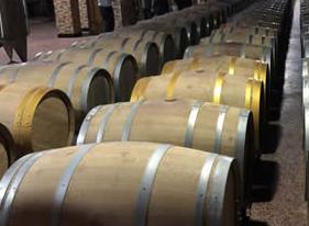 【全国网媒宁夏行】没想到宁夏红寺堡葡萄酒这么纯正