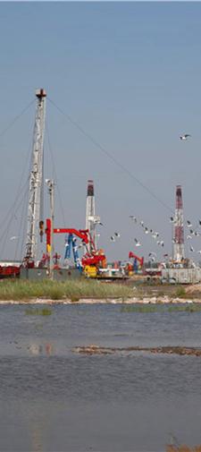冀东油田持续创建绿色矿山活动