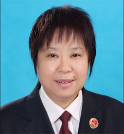 桃城区检察院谢玉华