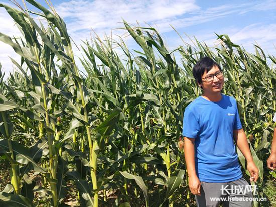 """青县窦伟山回村创业 700亩耕地""""刨出金"""""""
