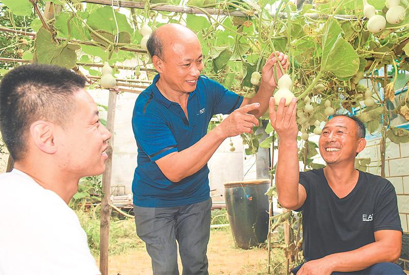 景县创新扶贫形式开展特色帮扶