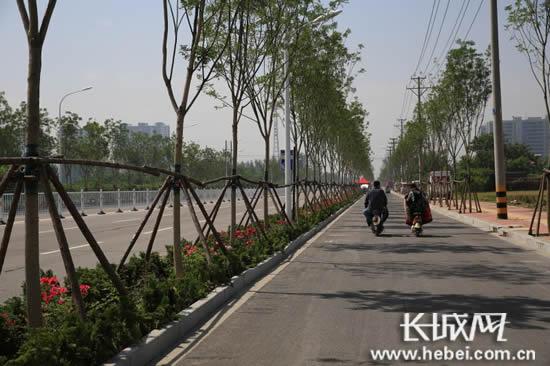 邢台市区道路两侧绿化初见成效。长城网郭洪杰摄