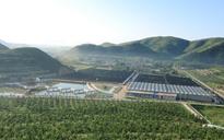 滦县鸡冠山生态园