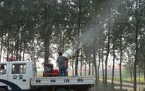森林病虫害防治