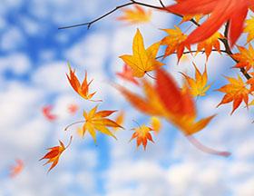 中秋假期天气晴朗、气温适宜 快准备出游吧!
